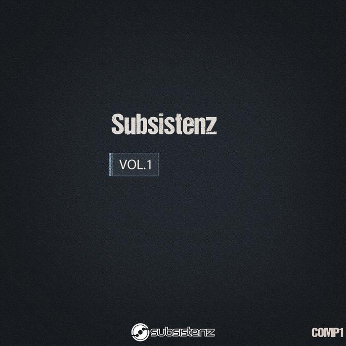 VARIOUS - Subsistenz Vol 1