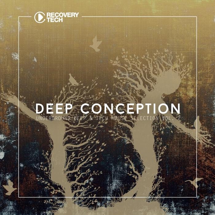 VARIOUS - Deep Conception Vol 2