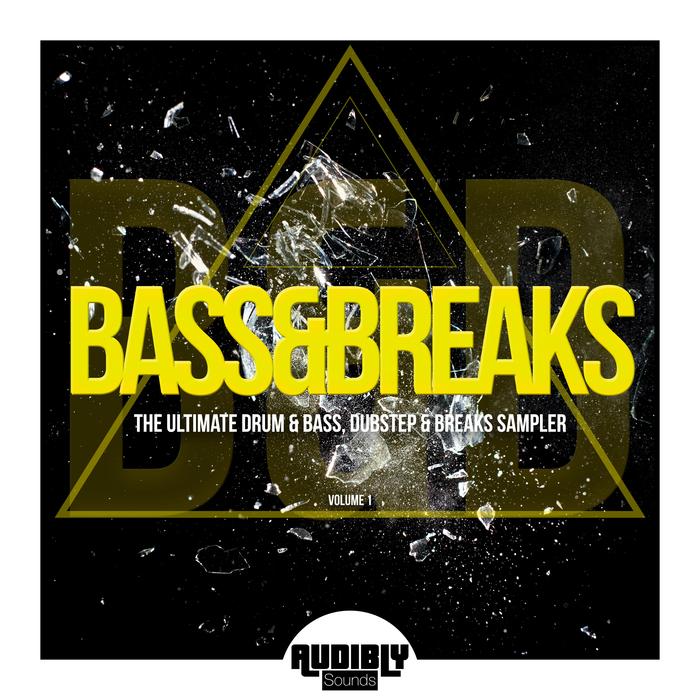 Download VA - Bass & Breaks (The Ultimate Drum & Bass, Dubstep & Breaks Sampler) Vol 1 mp3