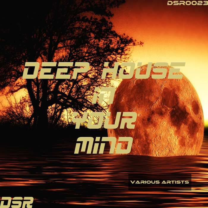 VARIOUS - Deep House In Your Mind