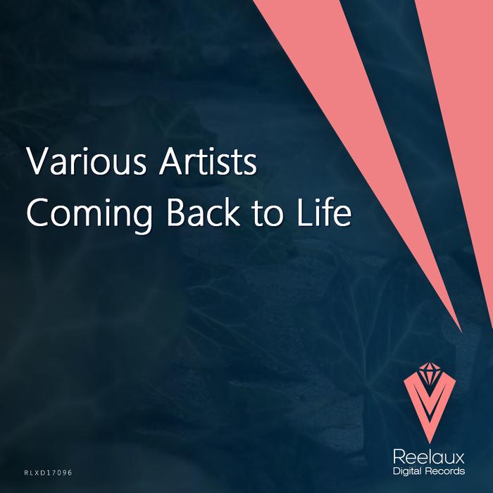 KAY-D/NANOFEEL/ROBERT R HARDY/TAMAS SKAFAR - Coming Back To Life
