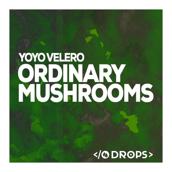 YOYO VALERO - Ordinary Mushrooms