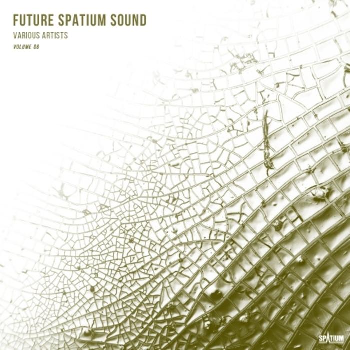 VARIOUS - Future Spatium Sound Vol 6