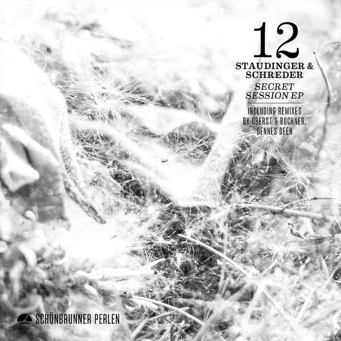 STAUDINGER & SCHREDER - Secret Session EP