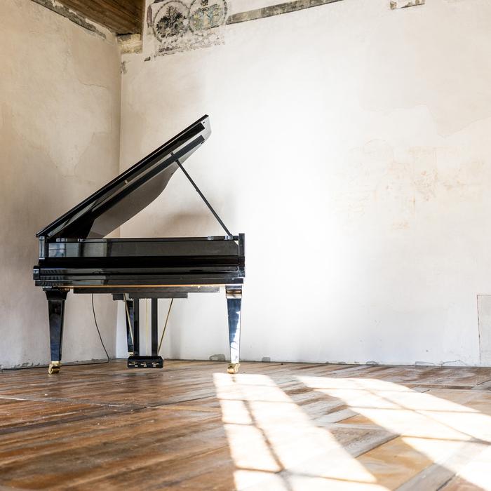 SIMON WHETHAM - Watering The Piano