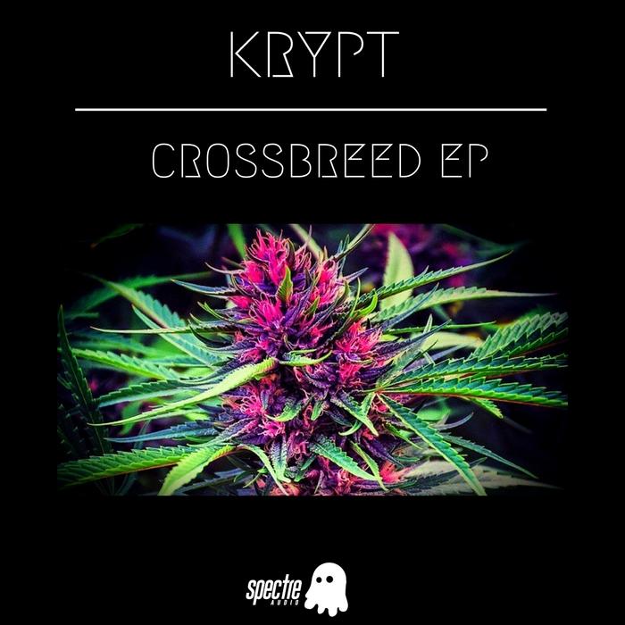 KRYPT - CrossBreed