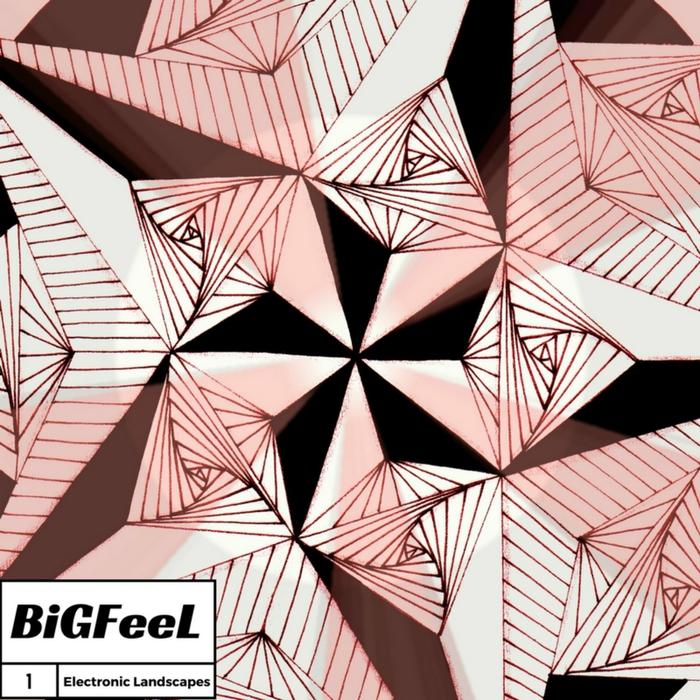 BIGFEEL - Electronic Landscapes Vol 1