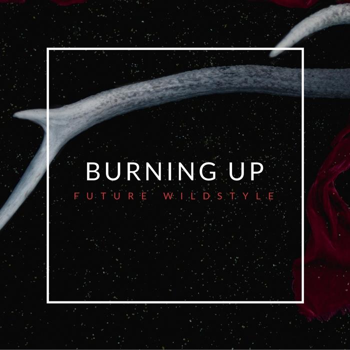 FUTURE WILDSTYLE - Burning Up
