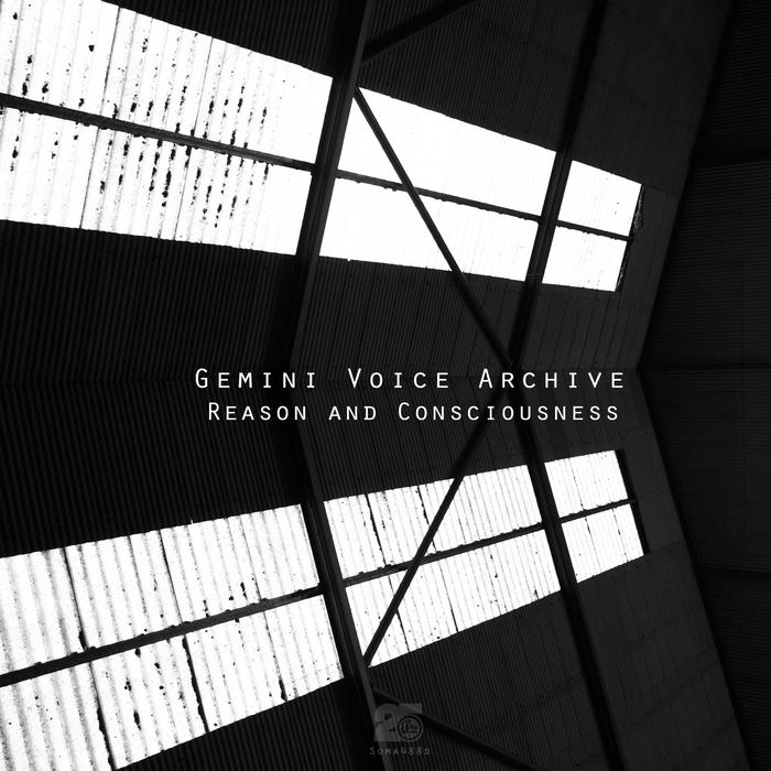 GEMINI VOICE ARCHIVE - Reason & Conciousness