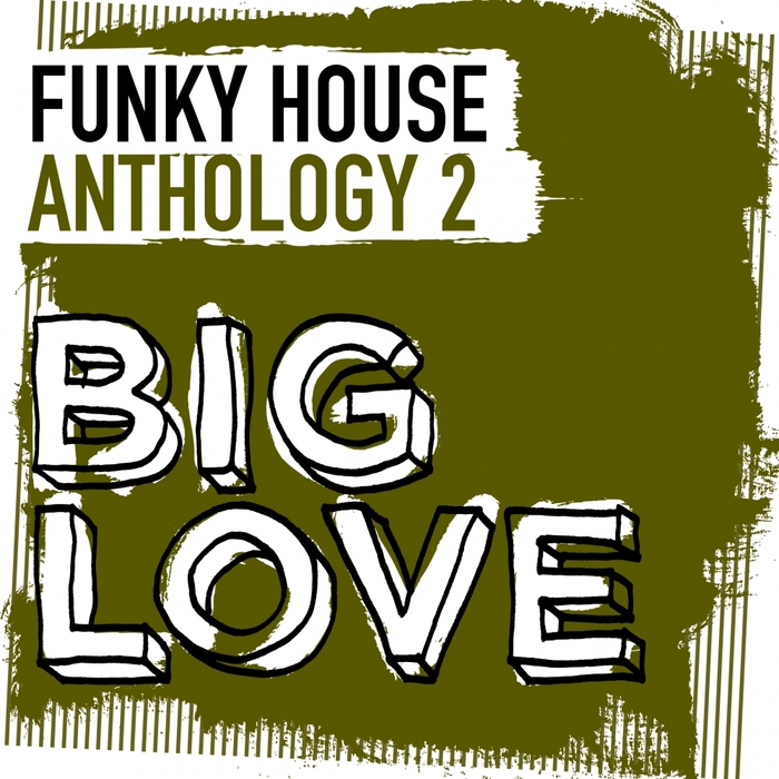 VARIOUS - Big Love Funky House Anthology 2