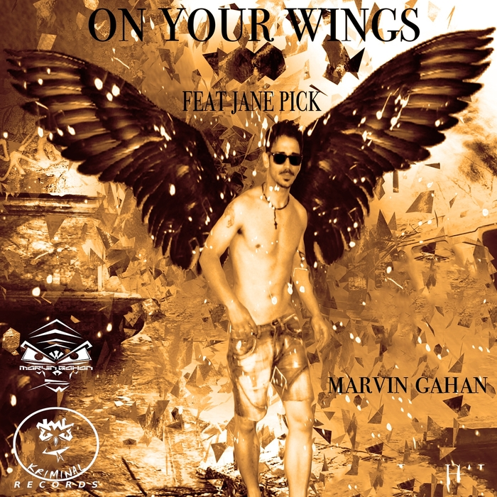 MARVIN GAHAN - On Your Wings