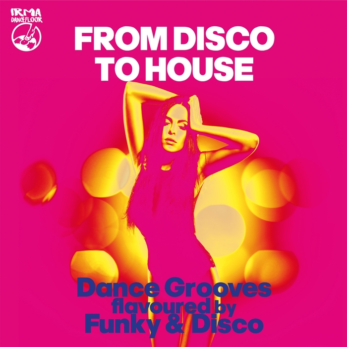 VARIOUS - From Disco To House (Dance Grooves Flavoured By Funky & Disco!!)