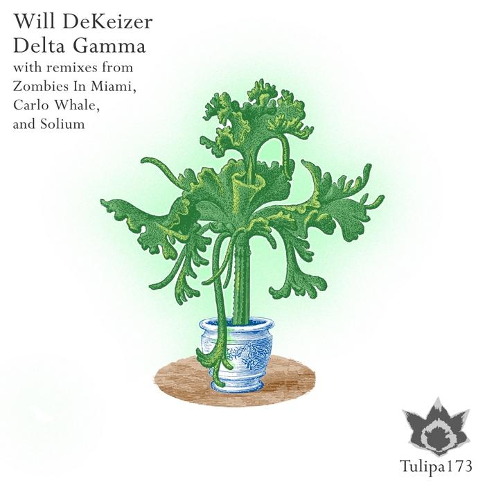 WILL DEKEIZER - Delta Gamma