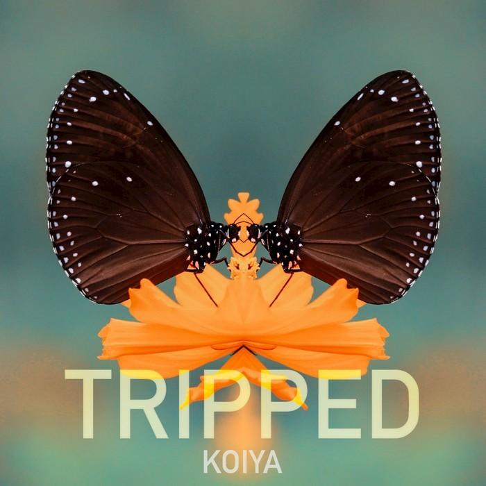 KOIYA - Tripped