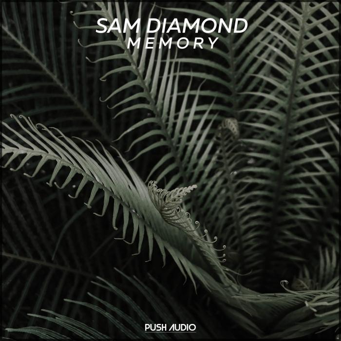 SAM DIAMOND - Memory