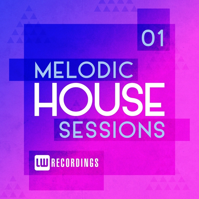 VARIOUS - Melodic House Sessions Vol 1