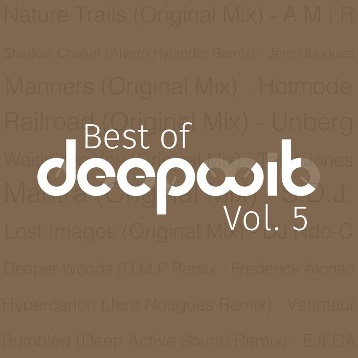 VARIOUS - Best Of DeepWit Vol 5