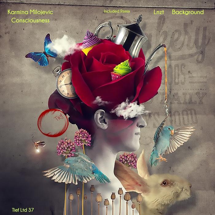 KARMINA MILOJEVIC - Consciousness