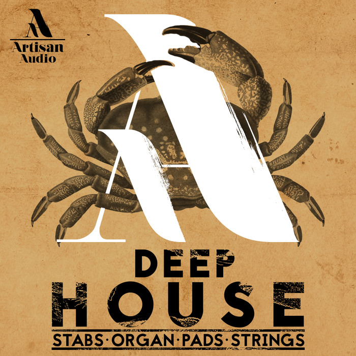 Artisan Audio: Deep House: Stabs, Organ Pads & Strings
