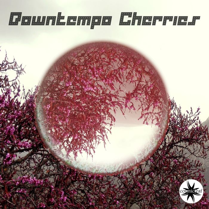 VARIOUS - Downtempo Cherries
