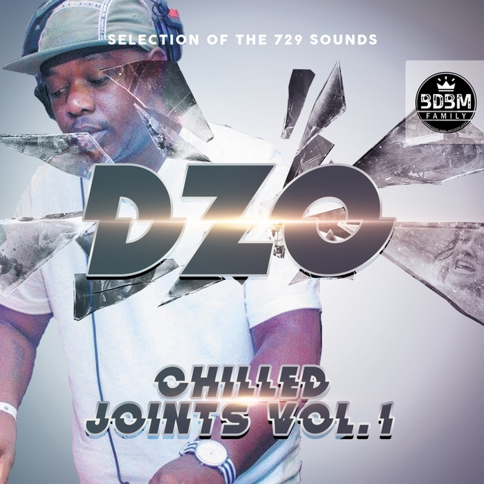 DZO - Chilled Joints Vol 1 (Selection Of The 729 Sounds)