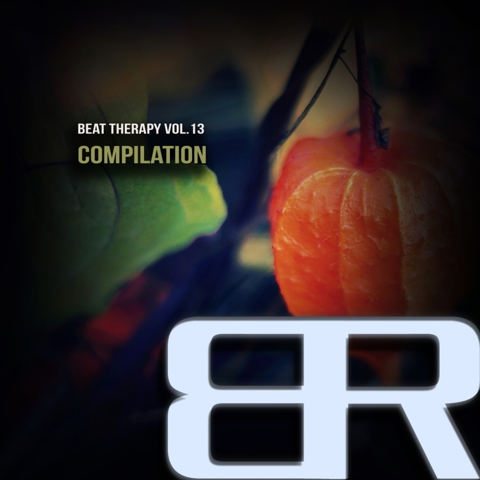 VARIOUS - Beat Therapy Vol 13 Compilation