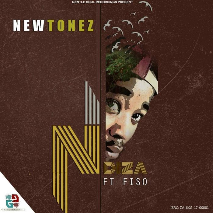 NEWTONEZ feat FISO - Ndiza
