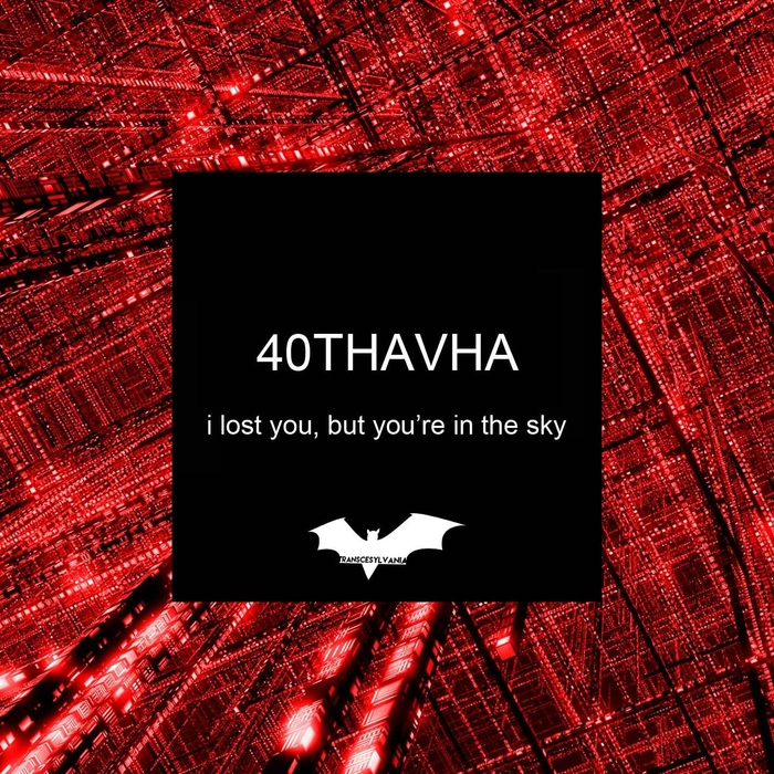 40THAVHA - I Lost You, But You're In The Sky