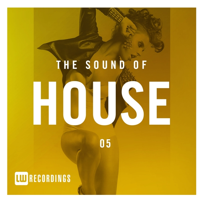 VARIOUS - The Sound Of House Vol 05