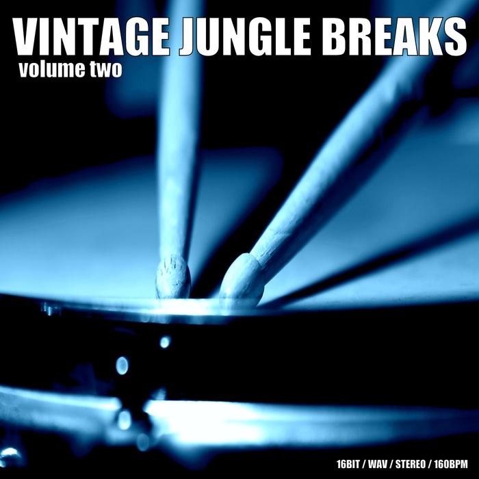 DIGITAL 6 - Vintage Jungle Breaks Vol 2 (Sample Pack WAV)