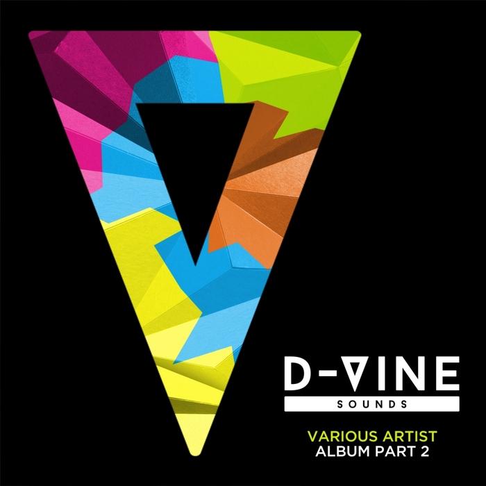 DJOKO/RICH PINDER/DENNIS QUIN/ANDSAN/TOLSTOI/CASSIMM/TIMMY P - D-Vine Sounds Part 2