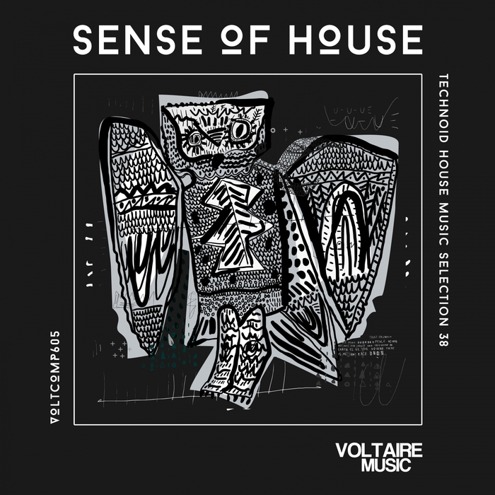VARIOUS - Sense Of House Vol 38 (Technoid House Music Selection 38)