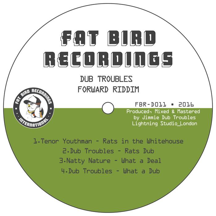 DUB TROUBLES feat TENOR YOUTHMAN - Dub Troubles Forward Riddim