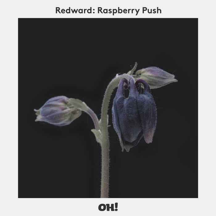 REDWARD - Raspberry Push
