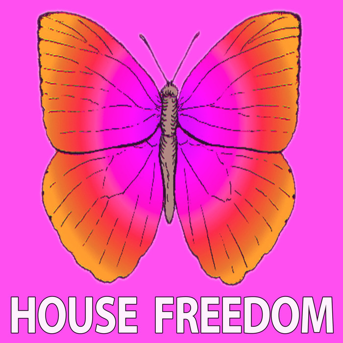 BIG BUNNY/ROUSING HOUSE/BUNNY HOUSE - Bright Deep
