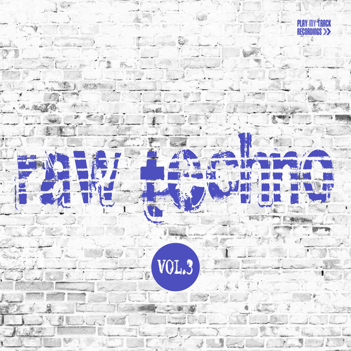 VARIOUS - Raw Techno Vol 3
