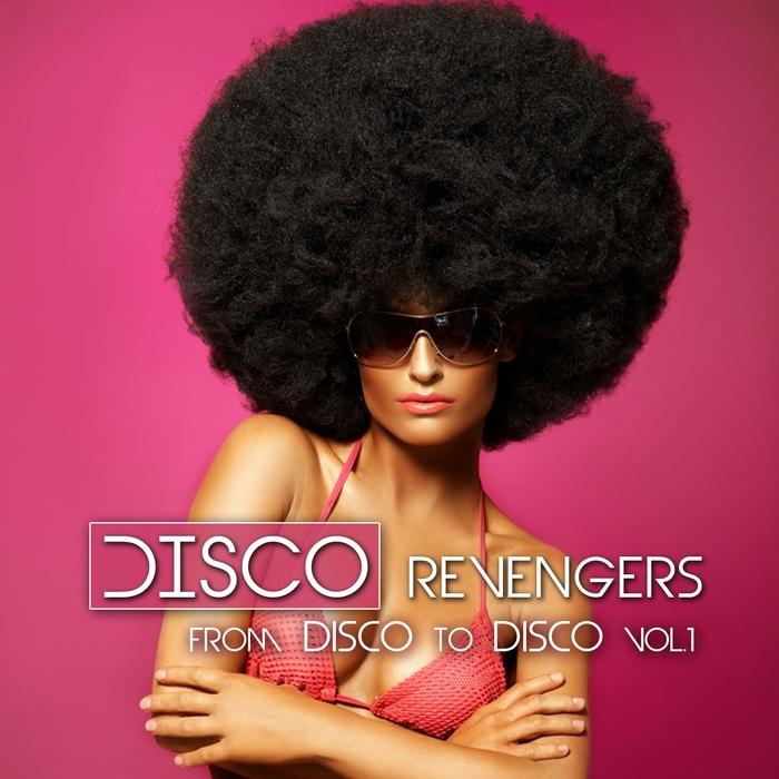 VARIOUS - Disco Revengers