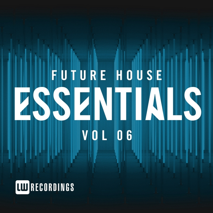 VARIOUS - Future House Essentials Vol 06