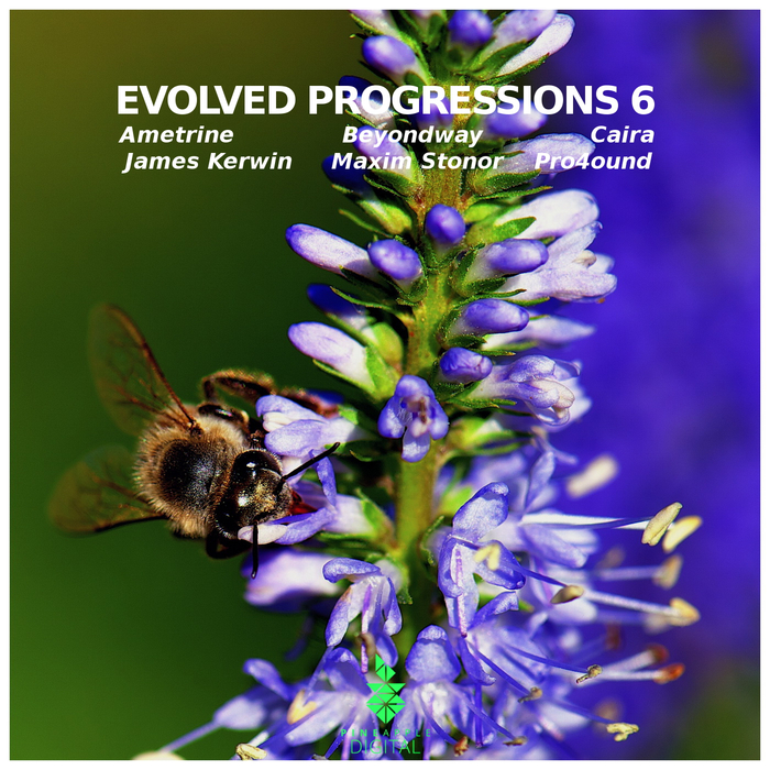 AMETRINE/BEYONDWAY/CAIRA/JAMES KERWIN/MAXIM STONOR/PRO4OUND - Evolved Progressions 6