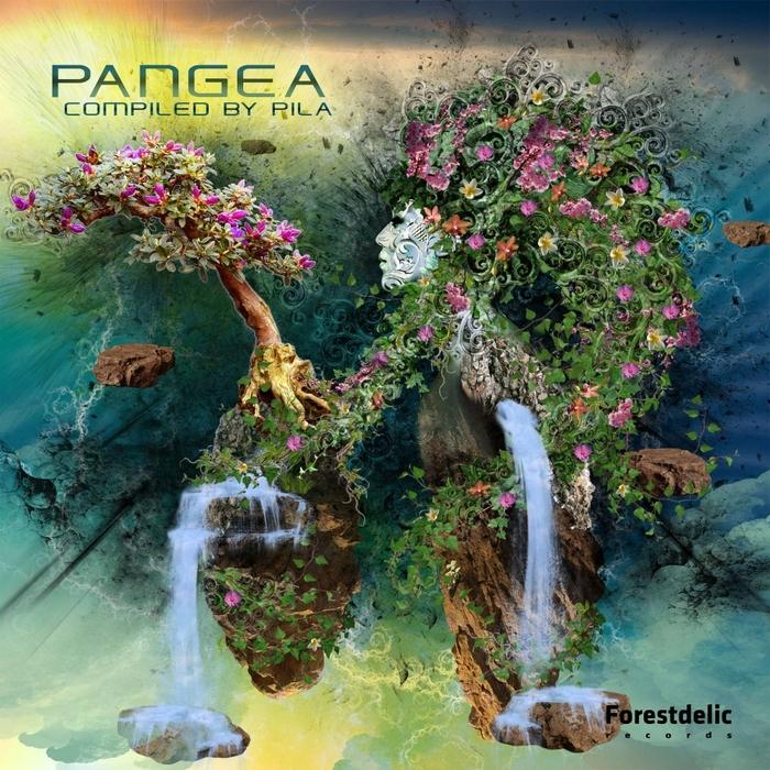 VARIOUS - Pangea