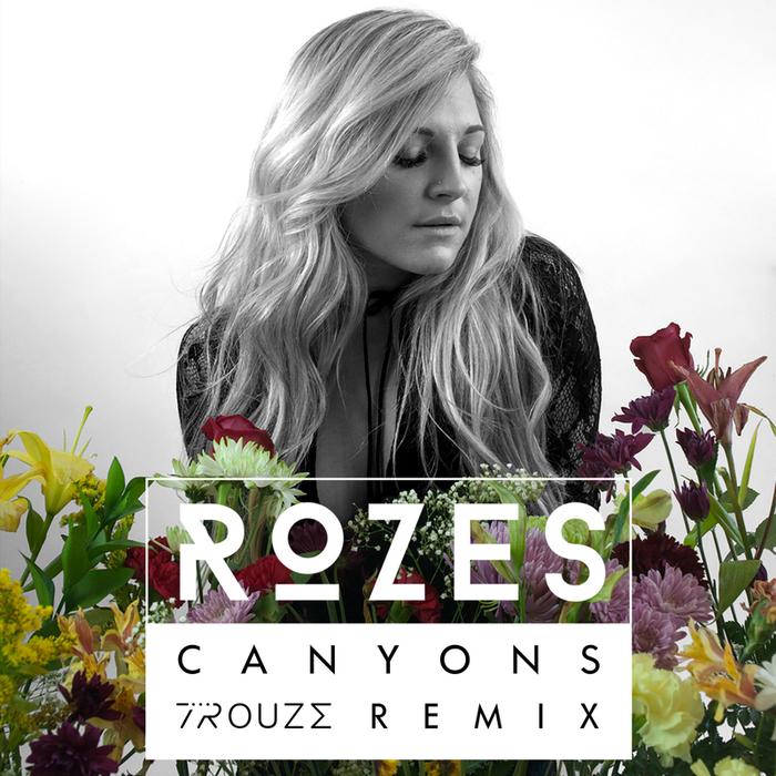 ROZES - Canyons (Trouze Remix)