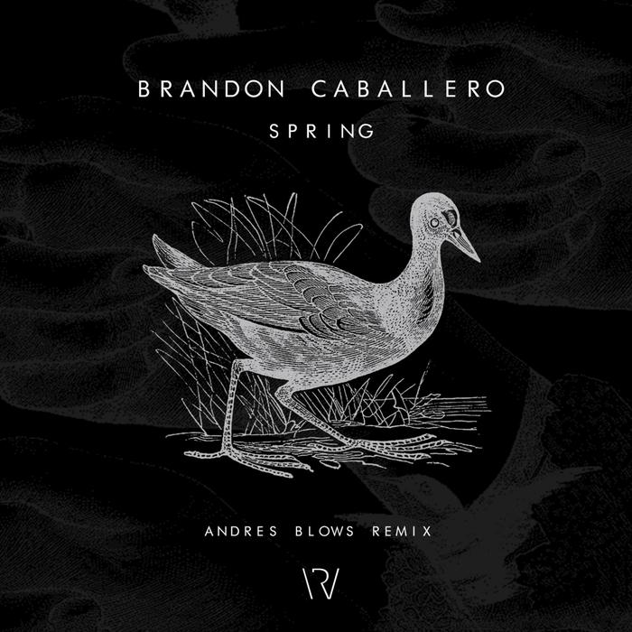 BRANDON CABALLERO - Spring