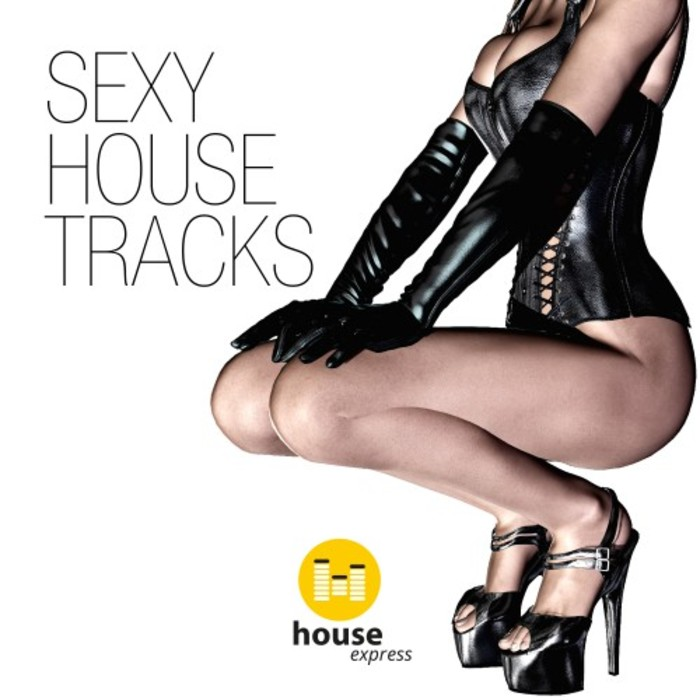 VARIOUS - Sexy House Tracks