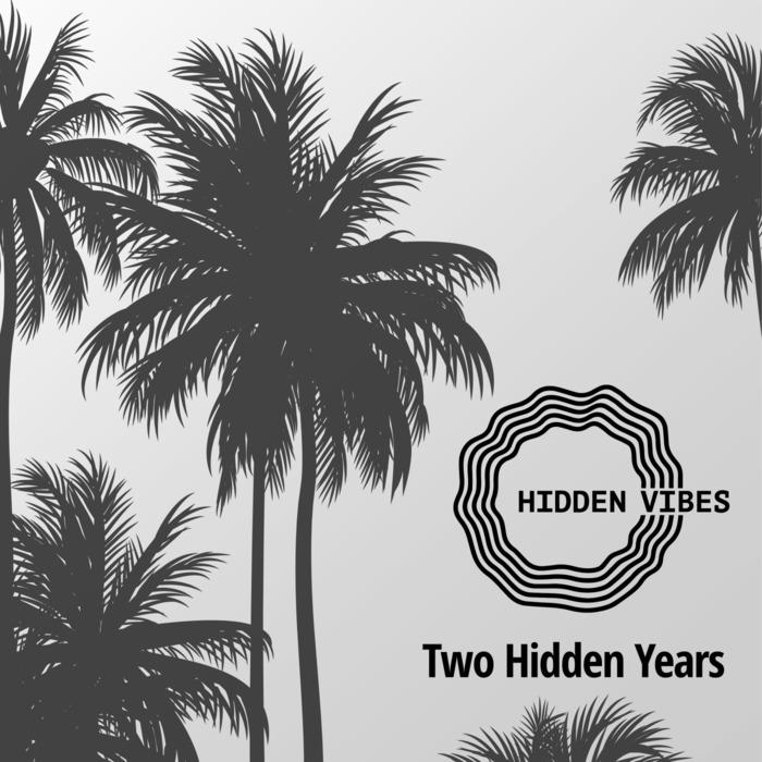 VARIOUS - Two Hidden Years