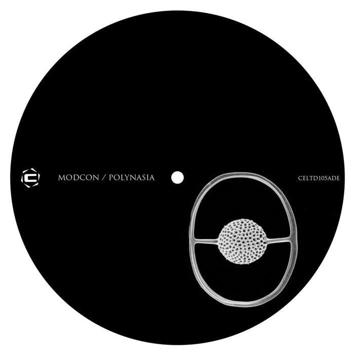 CHIPI - Modcon/Polynasia  (ADE Sampler 2017)