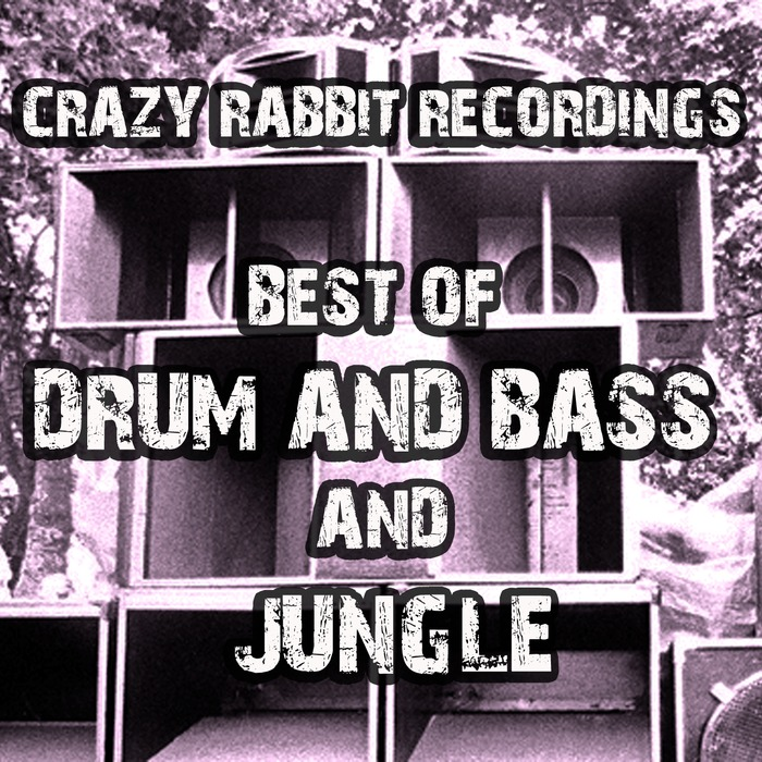 VARIOUS - Best Of Crazy Rabbit Recordings Drum And Bass And Jungle 2017