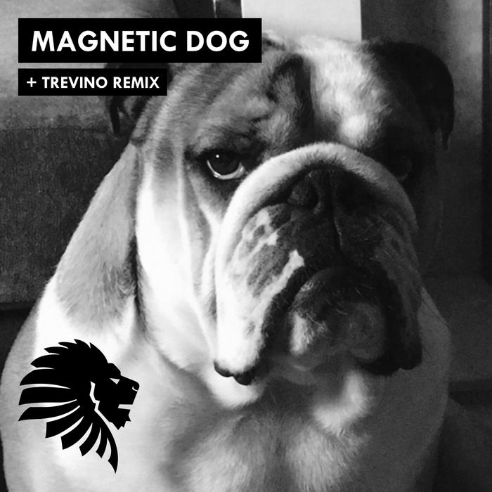 ALAN FITZPATRICK - Magnetic Dog