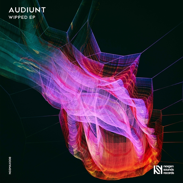 AUDIUNT - Wipped EP