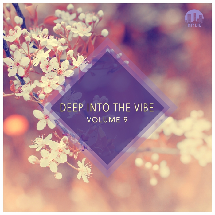 VARIOUS - Deep Into The Vibe Vol 9