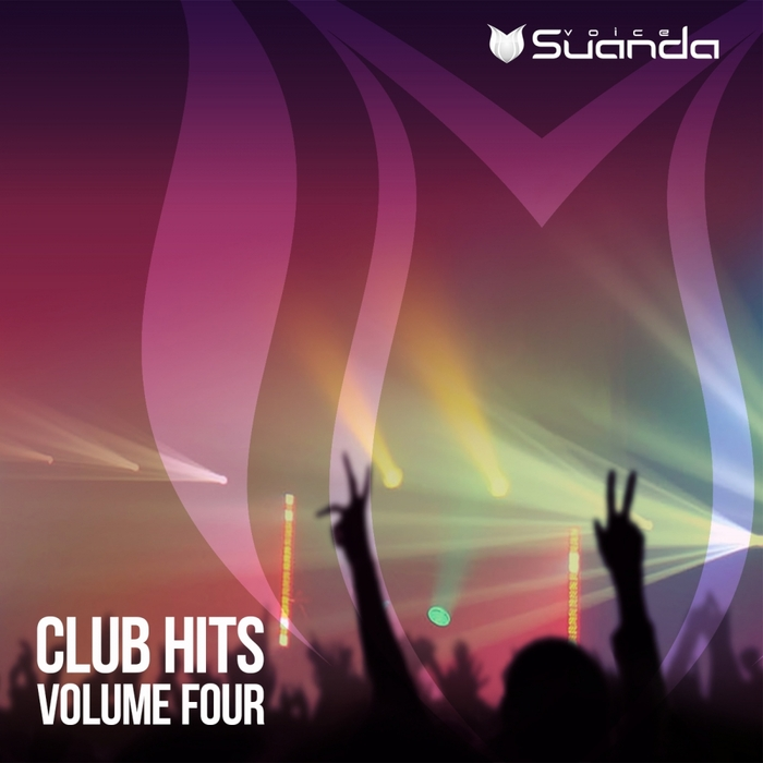 VARIOUS - Club Hits Vol 4